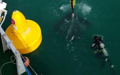 SealiteSLB1500 Buoys being installed in Dubai waters.
