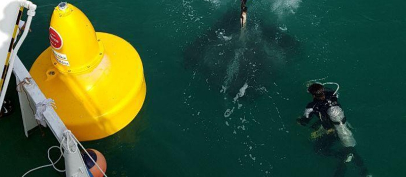 Sealite SLB1500 Buoys being installed in Dubai waters.